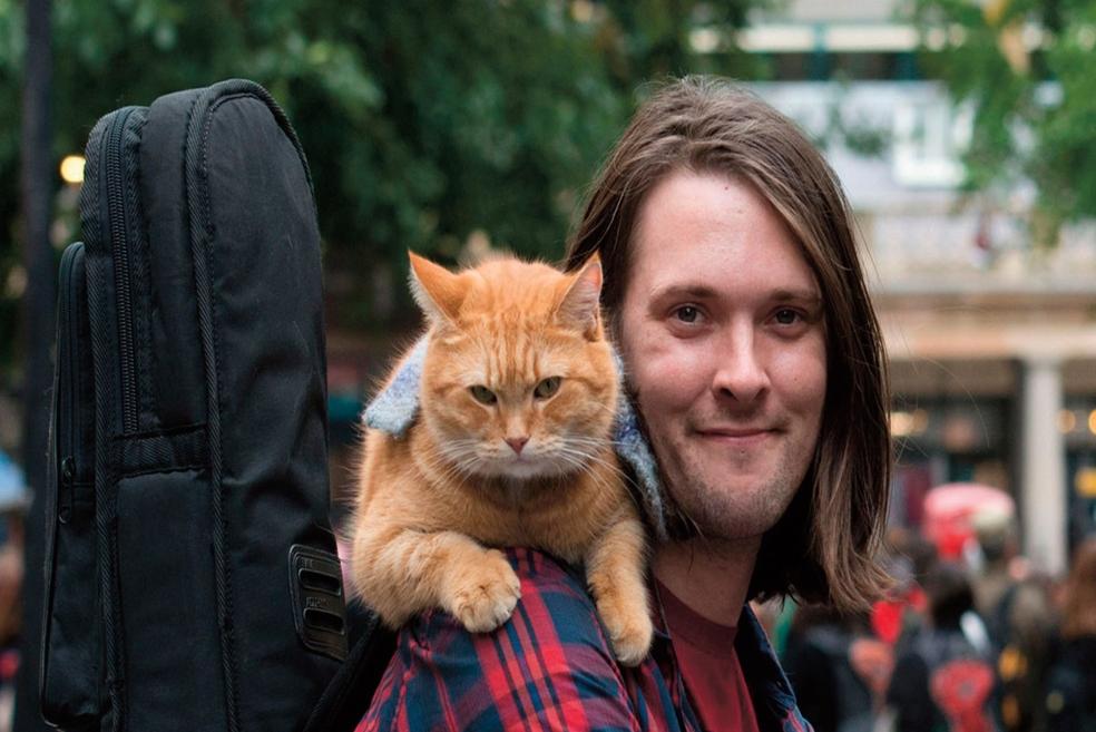 Madde Bağımlısı James Bowen'ın Hayatını Değiştiren Dost Canlısı Kedi Bob