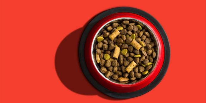 5. Ev yapımı sebzeli köfteli köpek maması