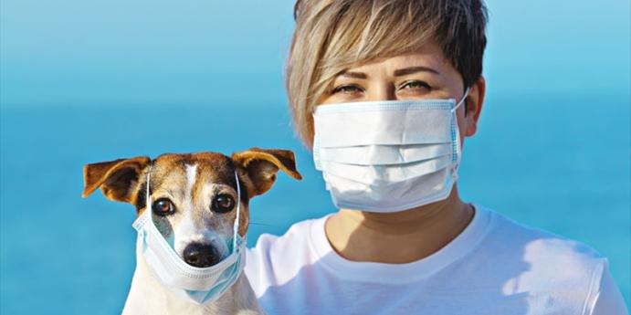 Coronavirüs'ün kedi ve köpekler üzerinde etkisi var mı?
