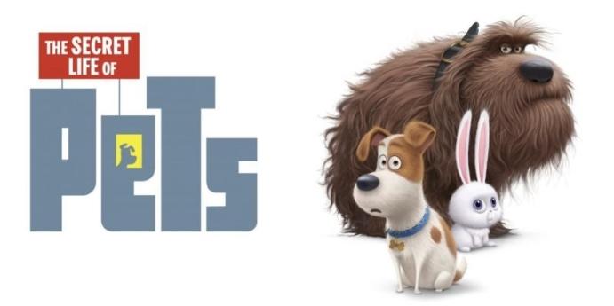 9. Evcil Hayvanların Gizli Yaşamı
