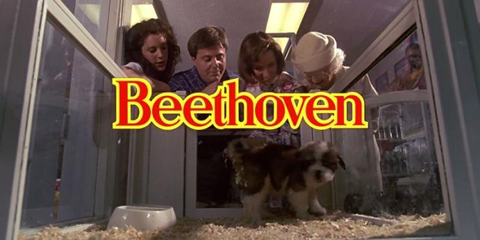 5. Afacan Köpek Beethoven