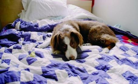 3) Onu uykusunda rahatsız etmek